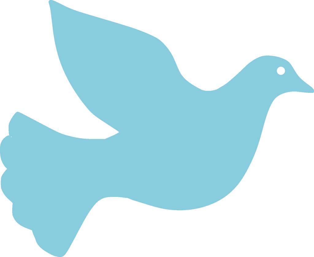 dove-157701_1280