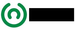 logo_INSHT